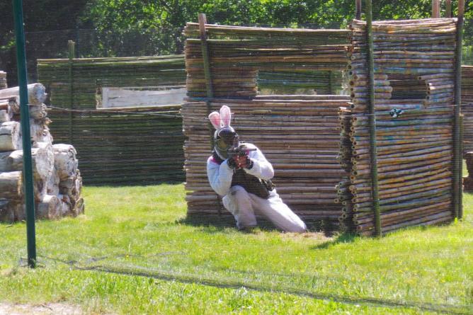un lapin sachant chasser